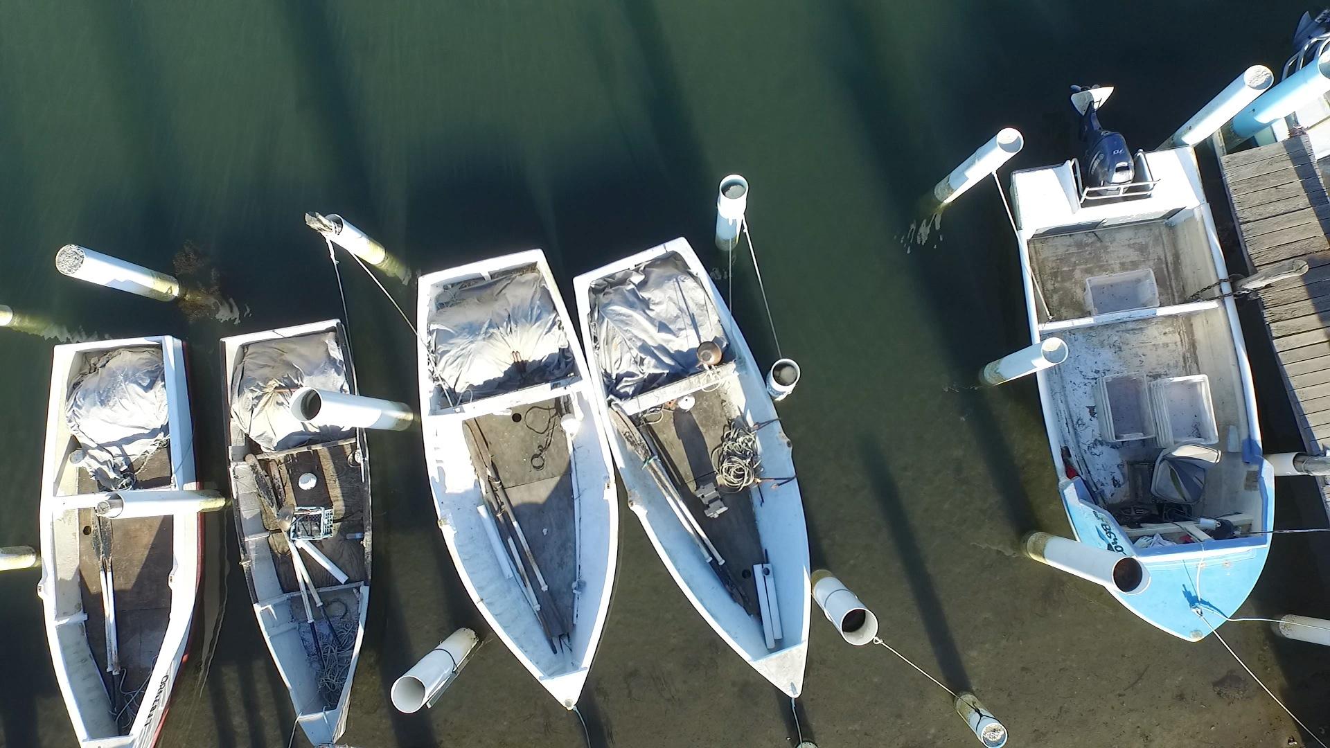 Tuncurry Boats